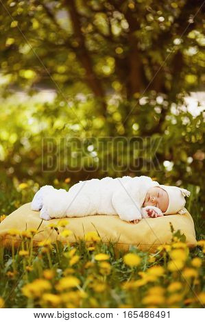 cute sleeping baby on big yellow pillow in flowers field