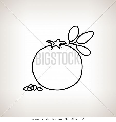 Pomegranate ,Image Pomegranate in the Contours on a Light Background, Black and White Illustration