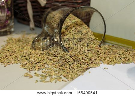 Fennel Seeds Spilling from a Jar, Food Theme