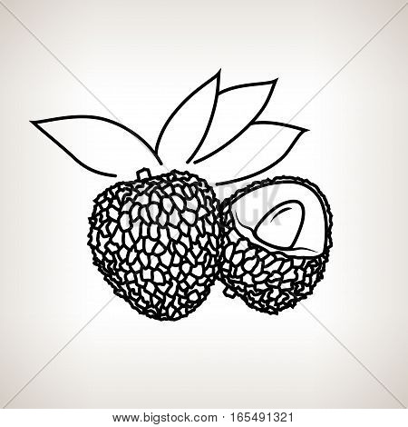 Lichee, Image Lichi in the Contours on a Light Background ,Black and White Illustration
