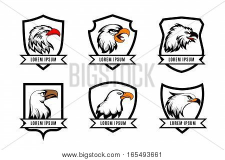 Vector eagle or american falcon heads with shields logo templates. Set of logotype with shield and eagle illustration