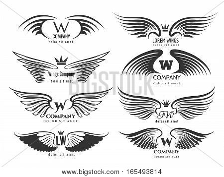 Wings logotype set. Bird wing or winged logo design isolated on white background. Pair of wings birds or angels for business logo illustration