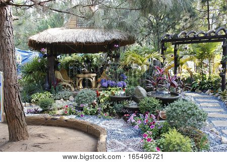 A native hut surrounded by well arranged garden