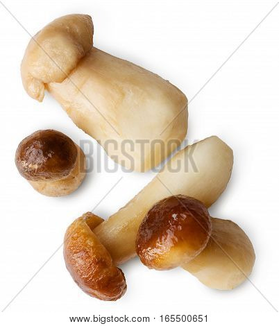 Edible forest wild mushrooms isolated on white background. Boiled fungus ready for cooking