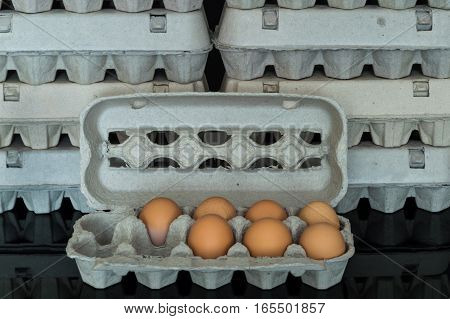 Egg Box With Seven Organic Chicken Eggs Inside