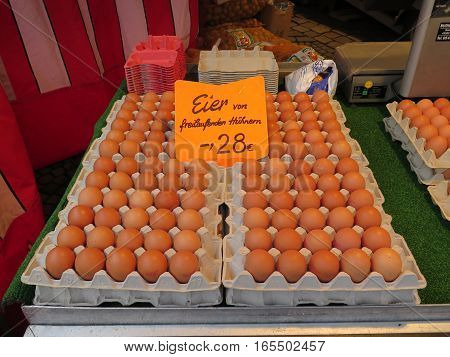 Trays Of Fresh Eggs For Sale