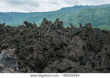 Lava Forest near Batur Mountain - frozen lava flakes, Indonesia.