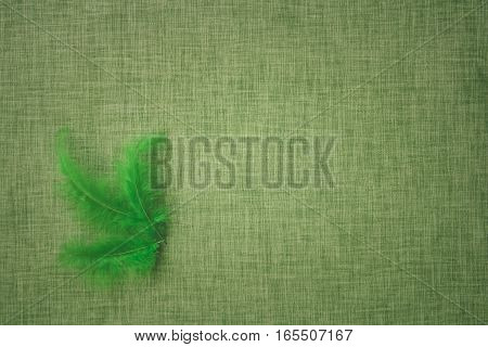 Coloured bird feathers on a fabric background intended for craft