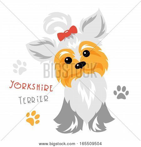 Cute funny dog silver blue and pale cream Yorkshire terrier breed sitting vector