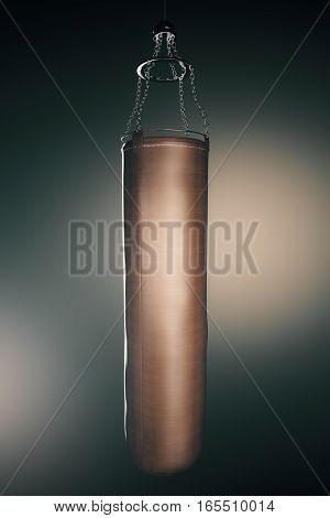 Brown Punching Bag