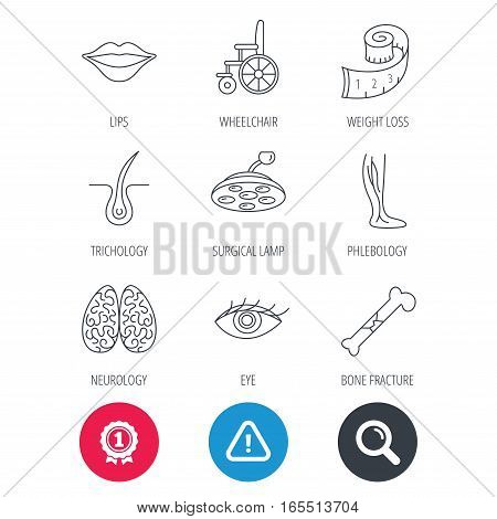 Achievement and search magnifier signs. Eye, neurology brain and vein varicose icons. Wheelchair, bone fracture and trichology linear signs. Weight loss, lips and surgical lamp icons. Vector