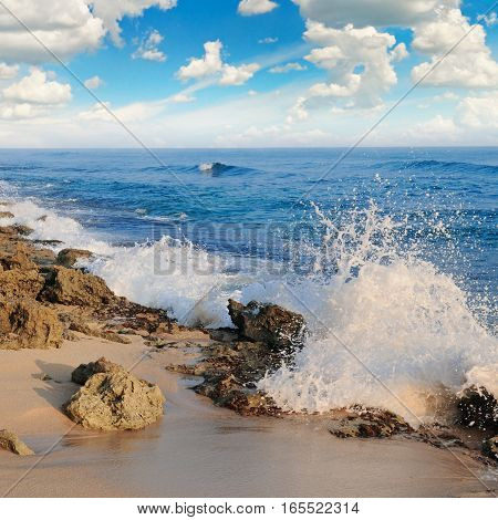 tropical ocean picturesque beach and blue sky