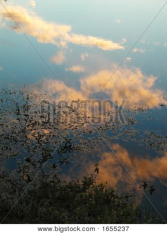 Reflection Of Sky