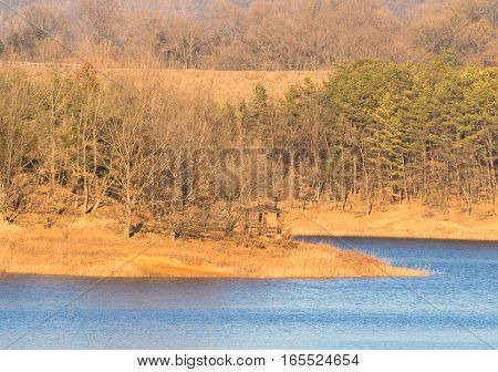 Landscape of a lake with evergreen trees and a small covered gazebo on the shore