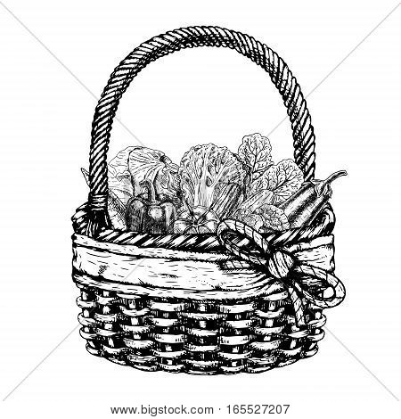 Vector basket with vegetables. Vintage black and white sketch. Vegan food. Retro design. Carrot pepper broccoli eggplant cucumber chinese cabbage beets tomato cauliflower. Vector illustration.