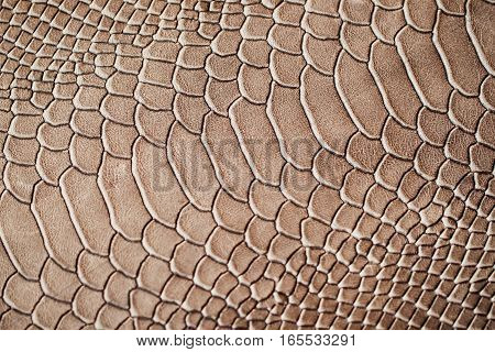 Texture of genuine leather close-up, embossed under the skin a reptile, background