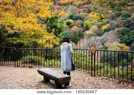 Girl Enjoy Autumn Foliage, Arashiyama