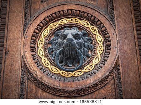 highly detailed image of doorknocker with head of lion