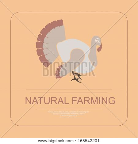 Logotype of natural farming with turkey in flat design. Perfect organic farm products banner or flyer. Vector illustration. eps 10