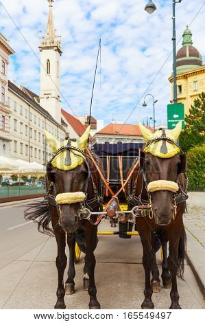 Austria. Vienna. A carriage drawn by two brown horses