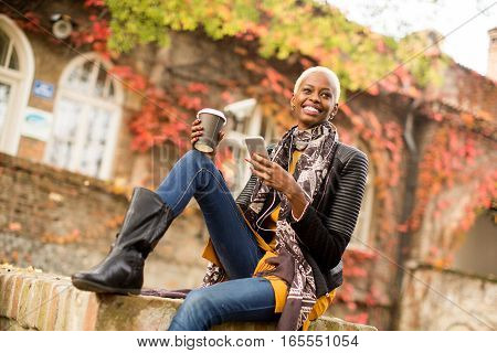 Atrractive African American Woman In Autumn Park