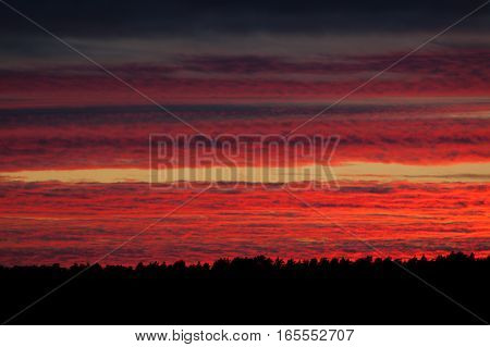 Vibrant fiery red sunset clouds sky background
