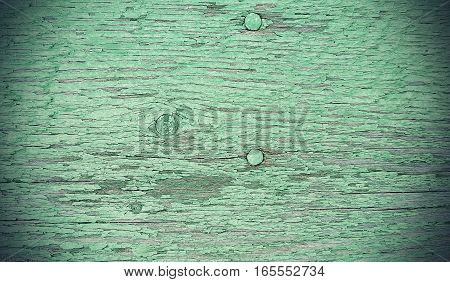 Close-up of old green painted weathered wooden vintage texture with nails