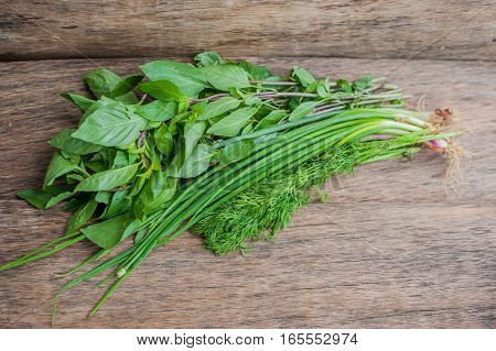 Green: Green Onions, Dill And Basil