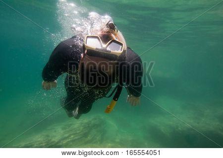 Snorkeler swimming over sea grass. green backround