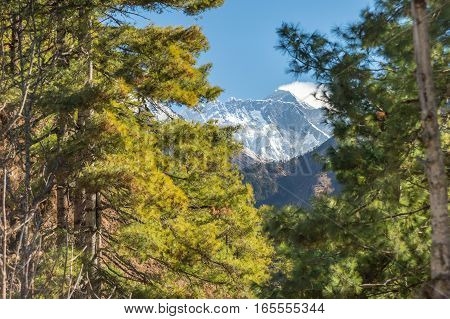 Glimpse Of Mount Everest Between The Trees On The Way To Everest Base Camp, Nepal.