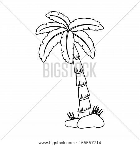 Palm tree icon in outline design isolated on white background. Brazil country symbol stock vector illustration.