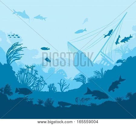 Undersea World, Coral Reef And Sea Creatures