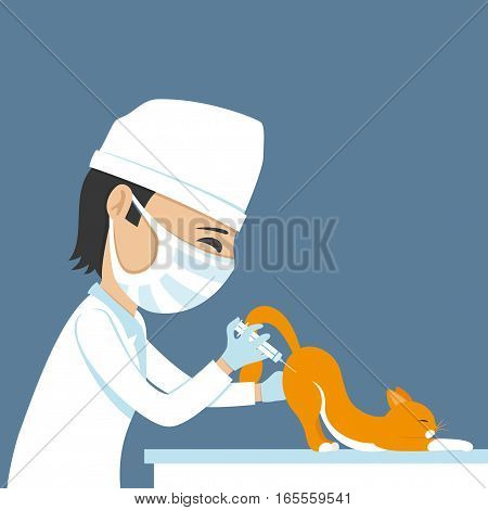 Veterinarian makes injection on a blue background.