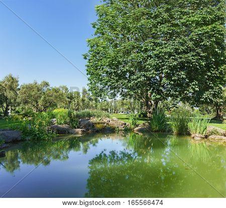 A pond in an olive grove Park Paradise. Partenit Crimea Russia