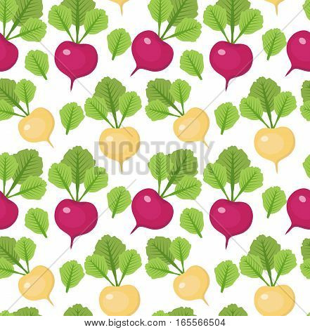 Radish seamless pattern. Red and white radishes endless background, texture. Vegetable background. Vector illustration