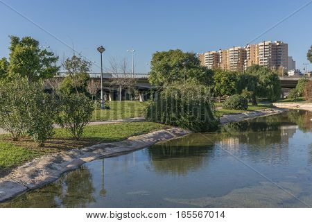 Beautiful landscape of Turia River gardens Jardin del Turia, leisure and sport area in Valencia, Spain. With trees, grass and water mirrors