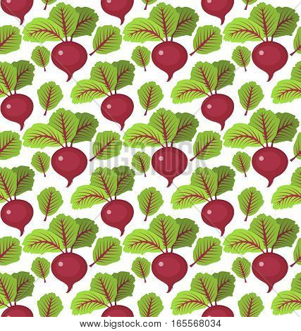 Beet seamless pattern. Beetroot endless background, texture. Vegetable backdrop. Vector illustration