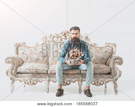 young handsome bearded man in blue shirt and jeans with on luxurious vintage couch or sofa holds box of pink flowers bouquet on white background