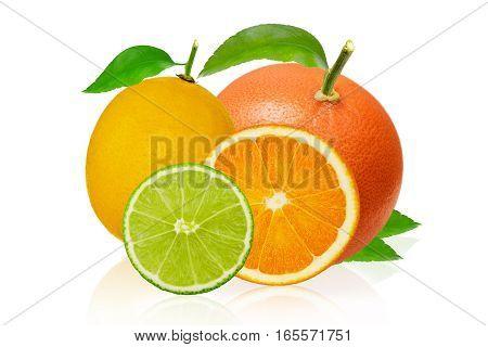 Lemon, pink grapefruit, lime and orange isolated on white background