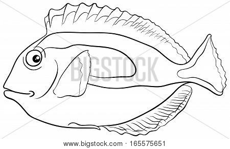 Blue Tang Fish Coloring Page