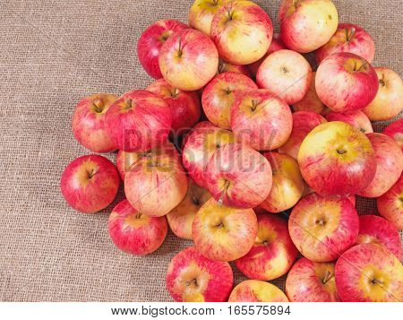 a bunch of red apples lying on a sacking