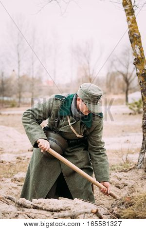 Unidentified Re-enactor Dressed As A German Infantry Soldier Of The World War Ii Digging A Trench In Autumn Forest.