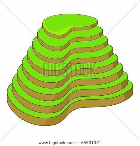 Rice terraces icon. Cartoon illustration of rice terraces vector icon for web design