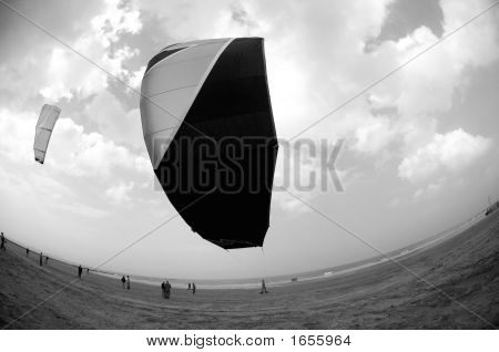 Kite Close-Up