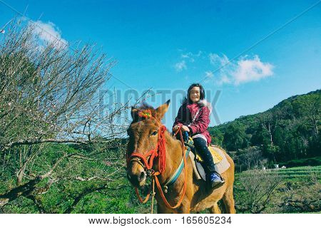 little girl is riding on brown pony in park in vintage style