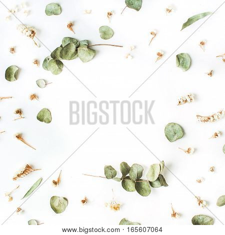 Frame of dry and fresh eucalyptus branches on white background. Flat lay top view