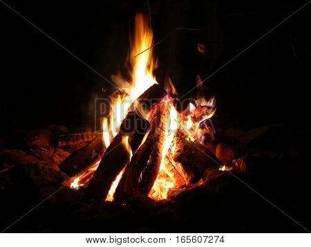 roasting marshmallows over a bright camp fire