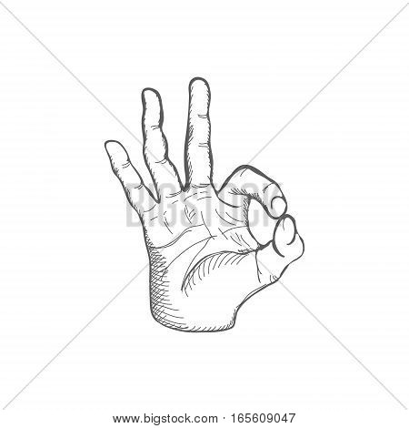 Hand Drawn Sketch Ok Gesture Vector Illustration