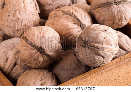 Macro View Of A Group Of Walnuts