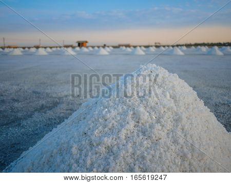 salt pan or salt field with blue sky background